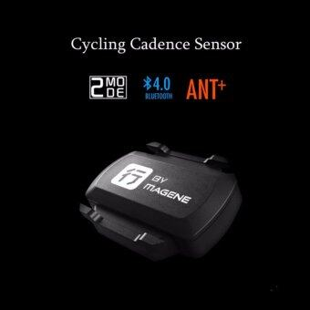 Harga Bike Computer Cycling Cadence Sensor Speedometer Bicycle ANT+ Bluetooth 4.0 Wireless Cycle Computer Xingzhe Ridding