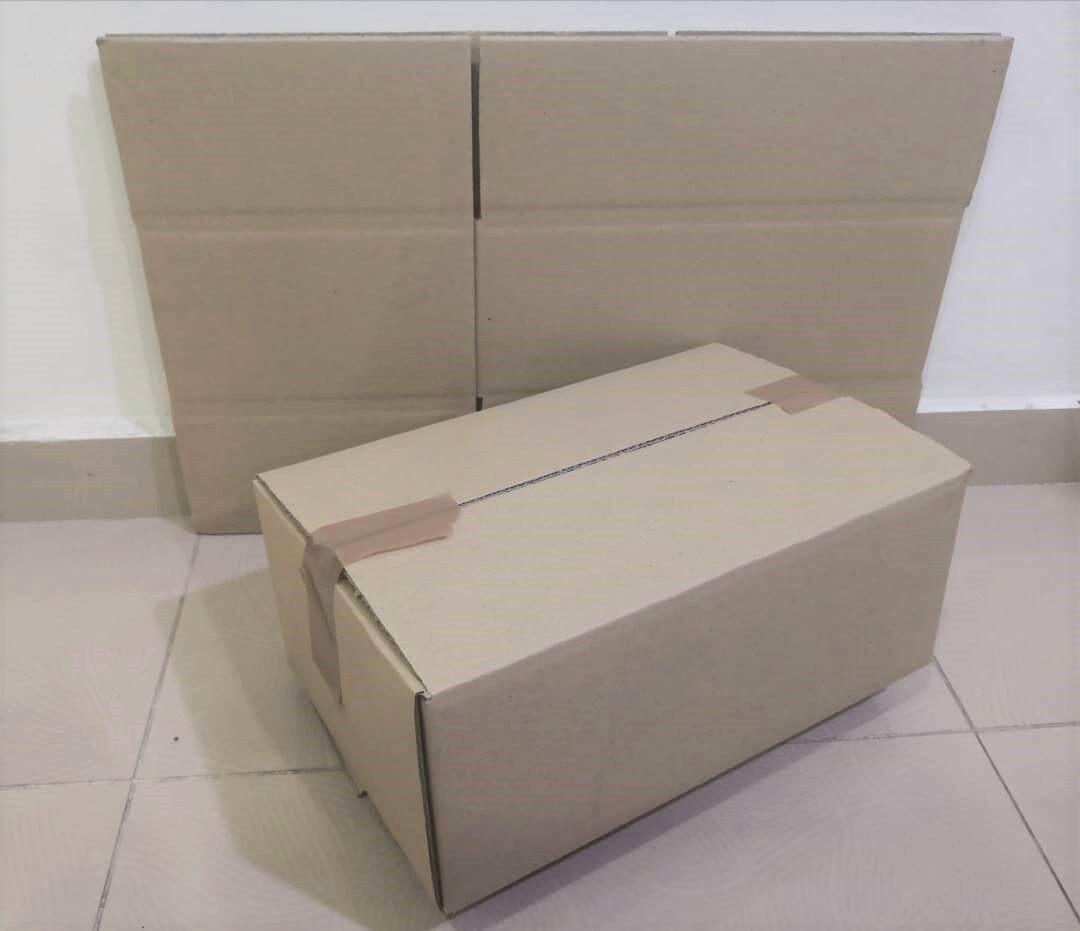 10pcs Plain Carton Boxes (L398 X W250 X H160mm)