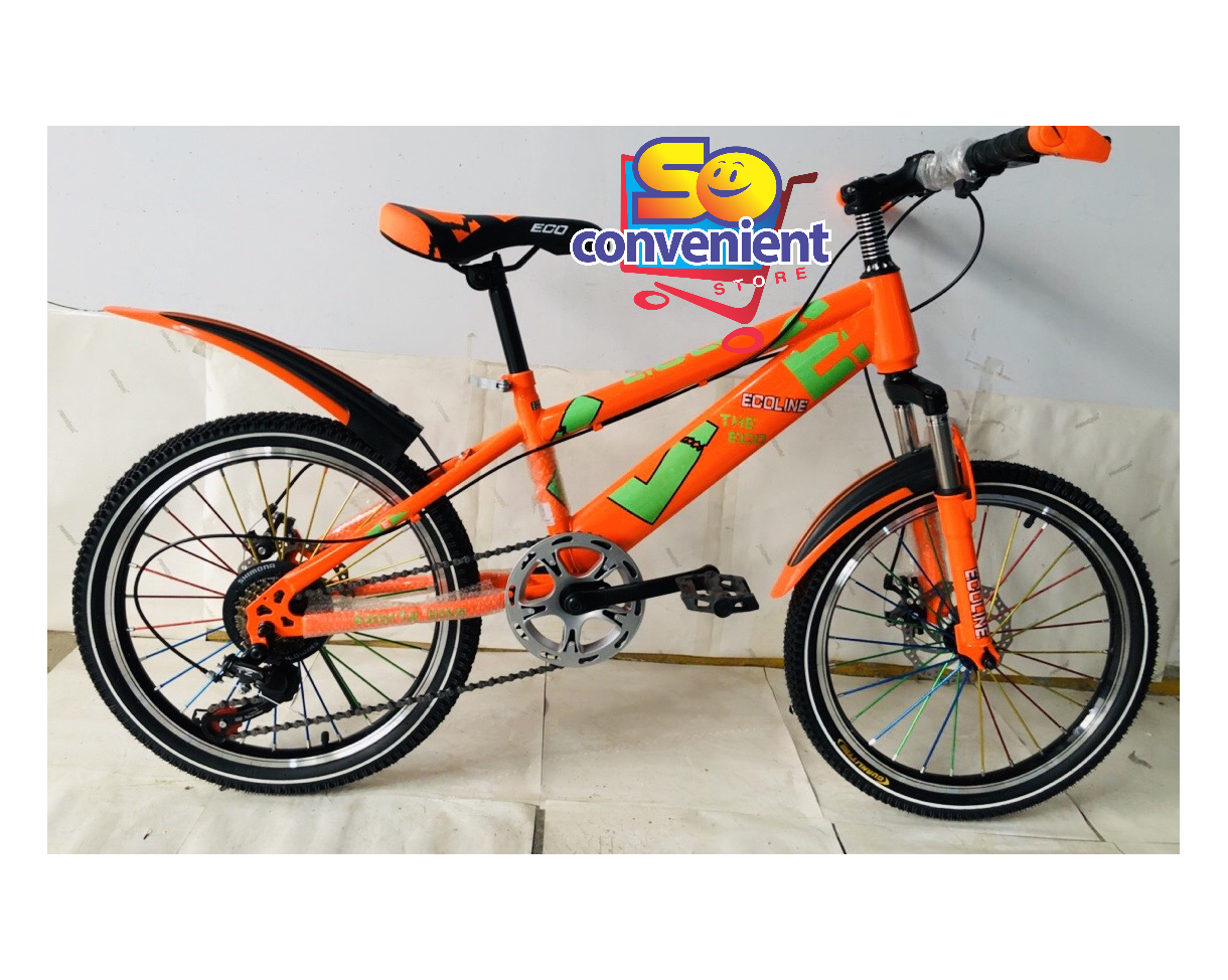 """20"""" Bicycle 2028 with Suspension Fork, Disc Break, 7 Speed and Big Colour Spoke"""