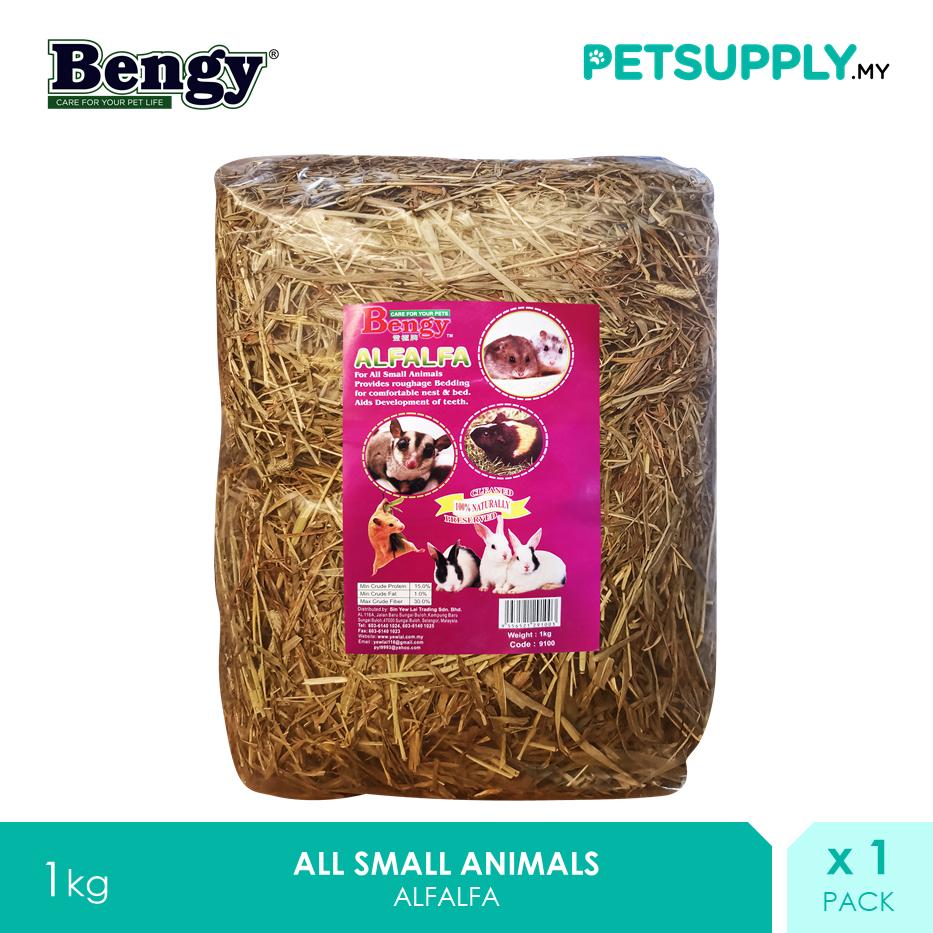 Bengy Alfalfa 1kg [Small Pet Food Grass Rumput Rabbit Arnab Hamster Sugar Glider - Petsupply.my]