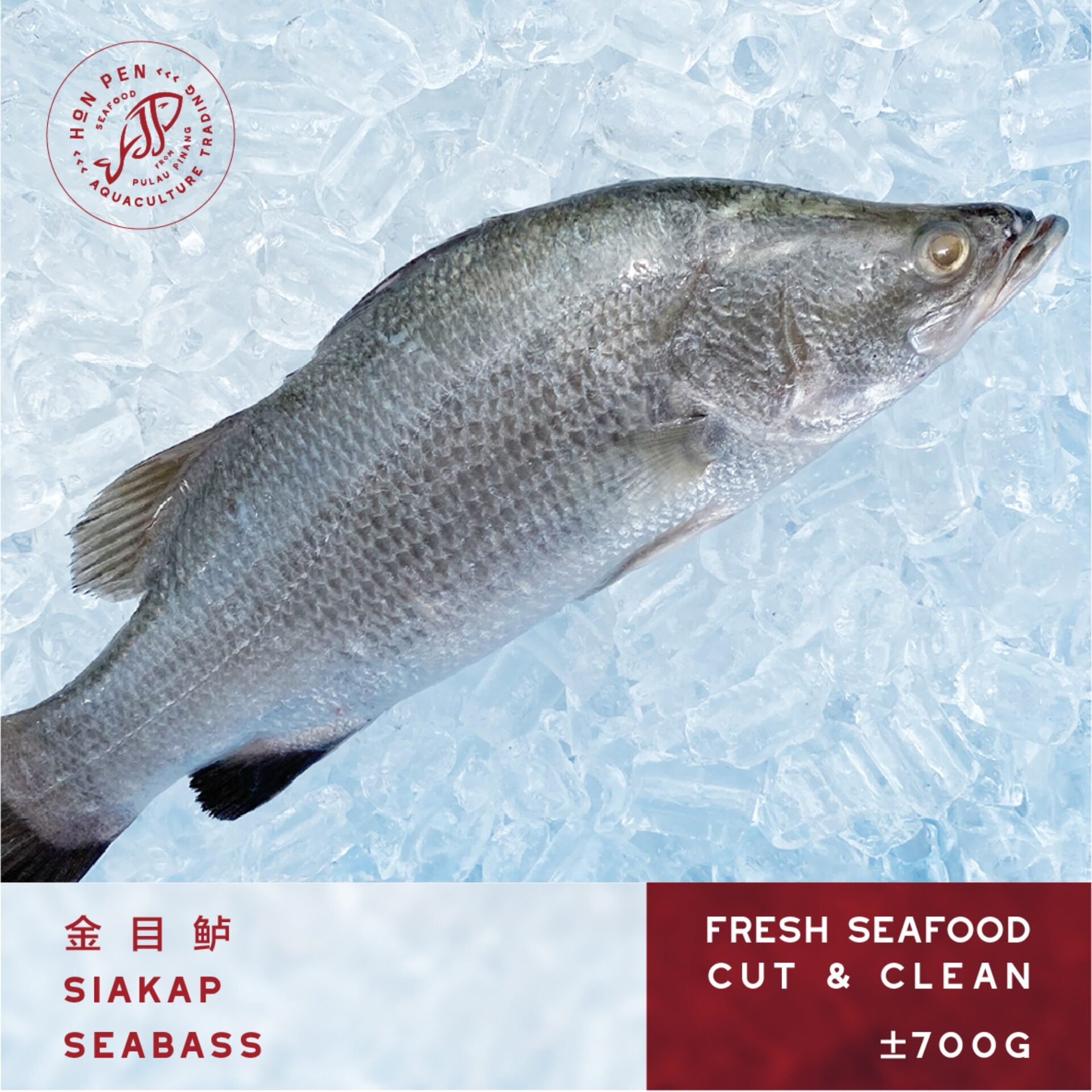 [Delivery applicable for purchases above RM50] 3pcs SEABASS 金目鲈 SIAKAP (Seafood) ±700g