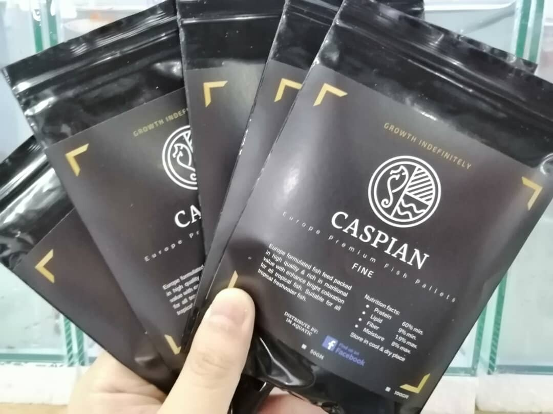 [22GM] CASPIAN Europe Premium Fish Pallets
