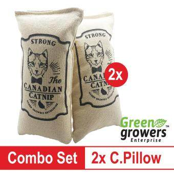2x Catnip Pillow Strong Canadian & Durable Fabric