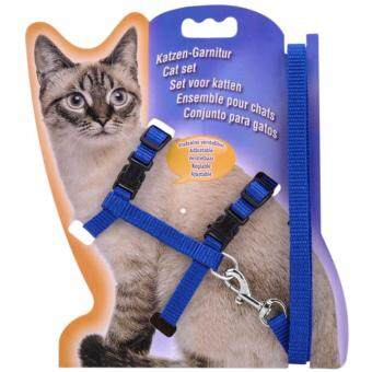 Harga Pet Safety Adjustable Cat Kitten Nylon Lead Leash Harnesses Set Safety Belt Rope (Blue)