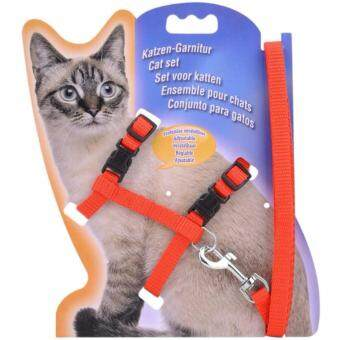 Harga Pet Safety Adjustable Cat Kitten Nylon Lead Leash Harnesses Set Safety Belt Rope (Red)