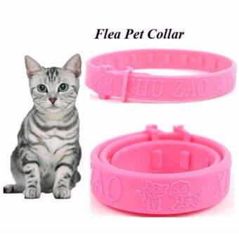 Harga Pet Cat Kitten Protection Elimination Flea & Tick Collar Adjustable Neck Ring Remedy