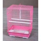Love Bird Cage 12″X9″X15.5″H Random Color (C105)