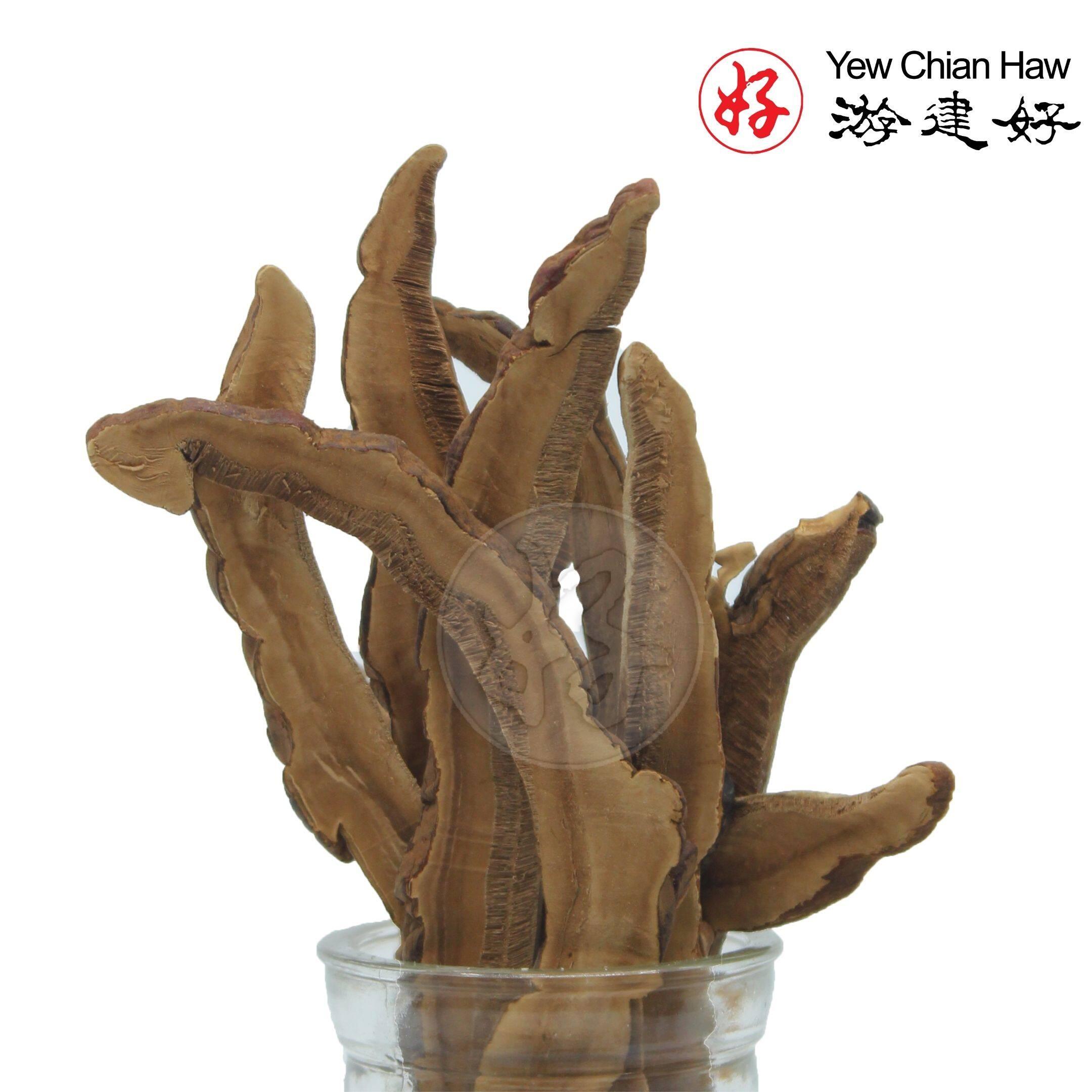 (22) YCH Herbs Jamur Ling Zhi/ Ganoderma Lingzhi / Reishi (22g Pack)HALAL