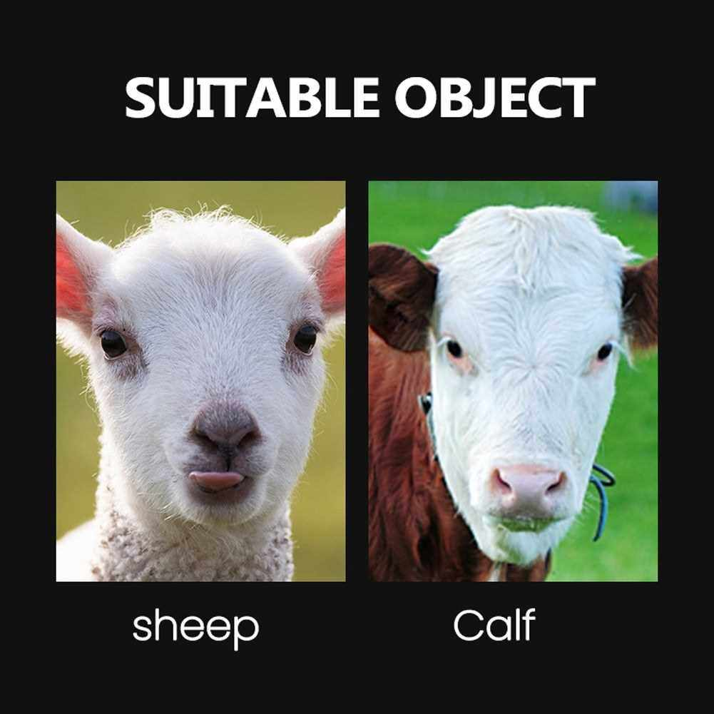 Best Selling Electric Remove Cattle Horn Sheep Horn Copper Heads Quick Bloodless Remove Calf Pasture Farm Utility Too (Eu)