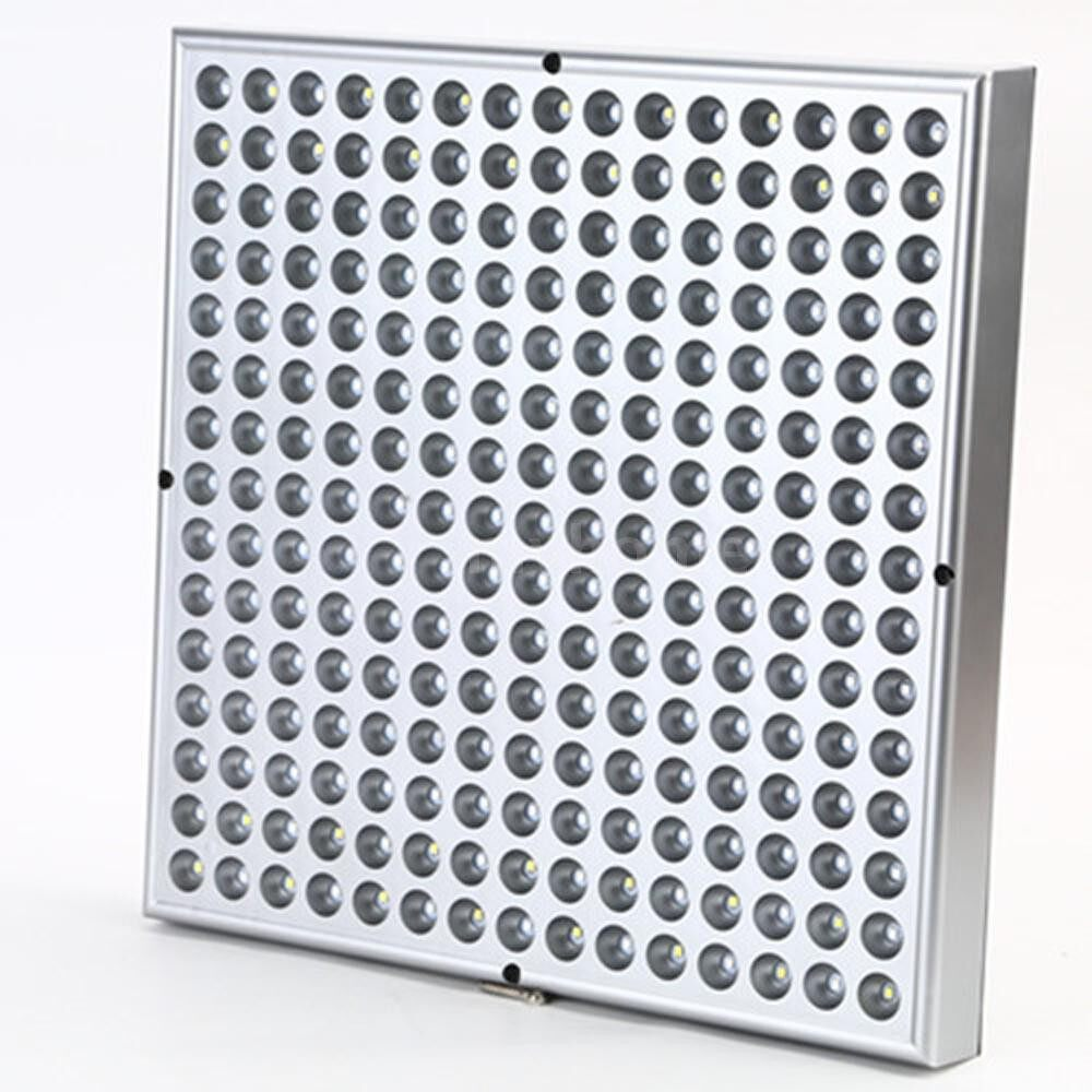 Lighting - 45W No-flash Light Plant Glowing Fast Glow Light Indoor Effective Coverage Area For Indoor - Home & Living