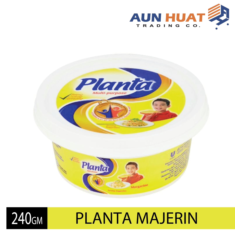 PLANTA MARJERIN 240 G