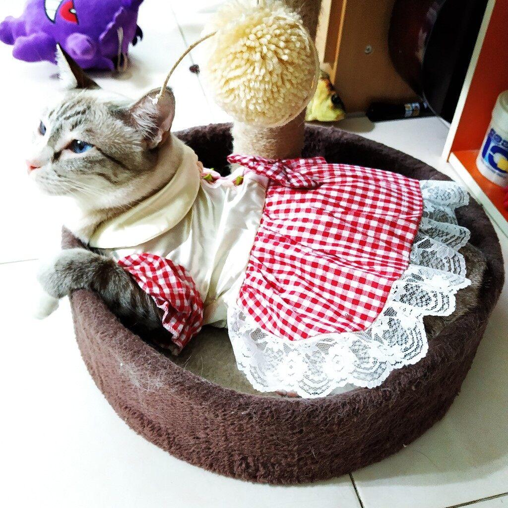 (NEET NEKO) Pet Dress (Red) / Pet Cloth