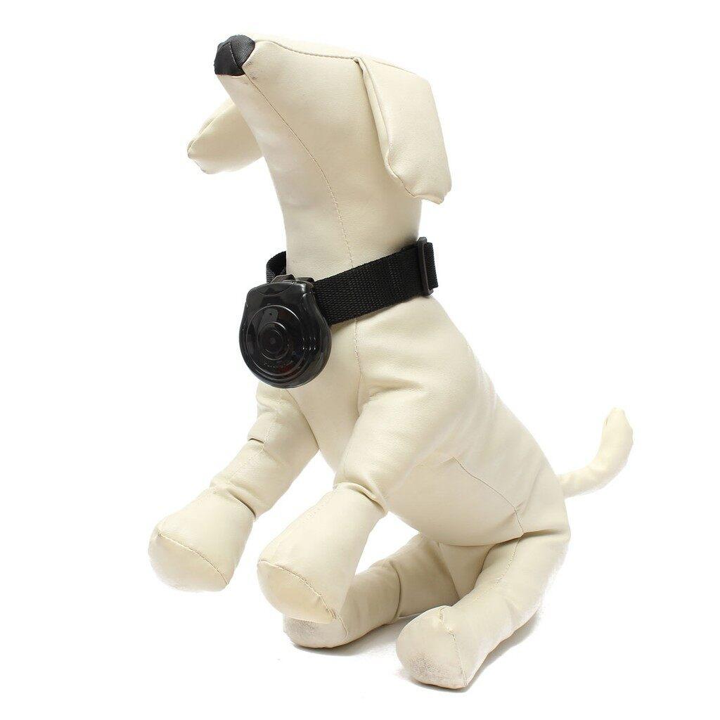 Lighting and Studio Equipment - Collar Cam Camera Video Recorder Monitor for Dog Cat Pet - Camera Accessories