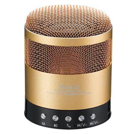 Wster Ws-851  Bluetooth Speaker With Hi-fi Sound & Metallic Bass Background GOLD