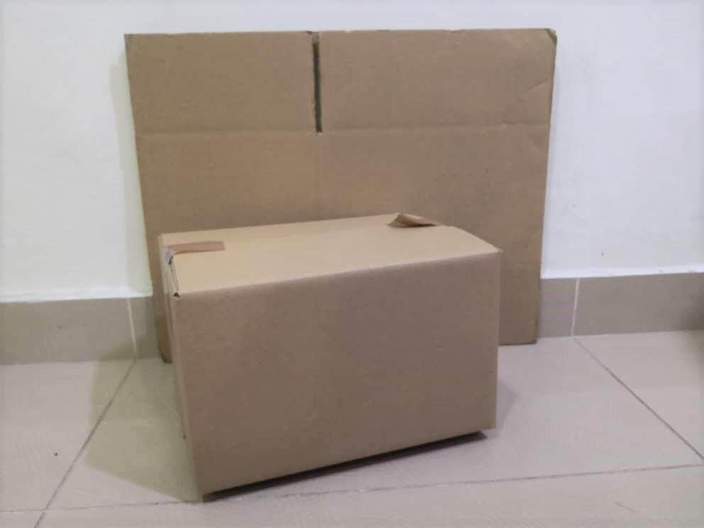 10pcs Plain Carton Boxes (L290 X W221 X H182mm)