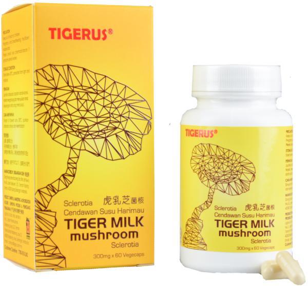 TIGERUS Tiger Milk Mushroom Sclerotia 60s