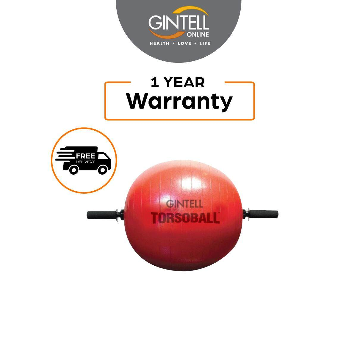 GINTELL Torsoball Total Body Training System
