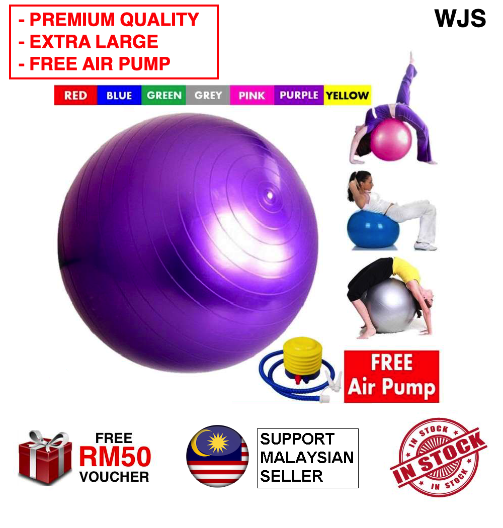 (FREE AIR PUMP + ENHANCED MATERIAL) WJS Large Premium Gym Ball Anti-burst Yoga Ball Small Pilates Ball 2 Pack Static Strength Stability for Yoga Birthing Exercise Ball Home Gym Workout Tune Up Cardio Fitness Training Physical Therapy BLUE PINK PU