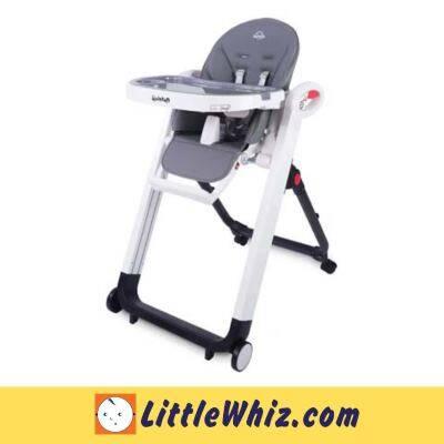 Quinton: Go Berry High Chair