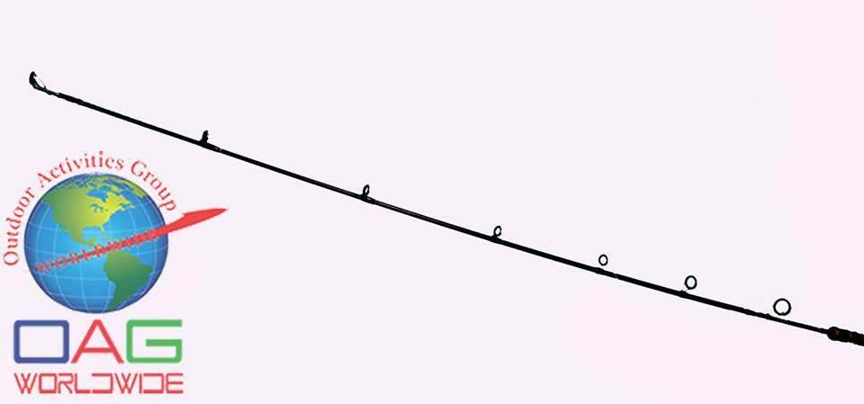 Pflueger Trion XT Rods