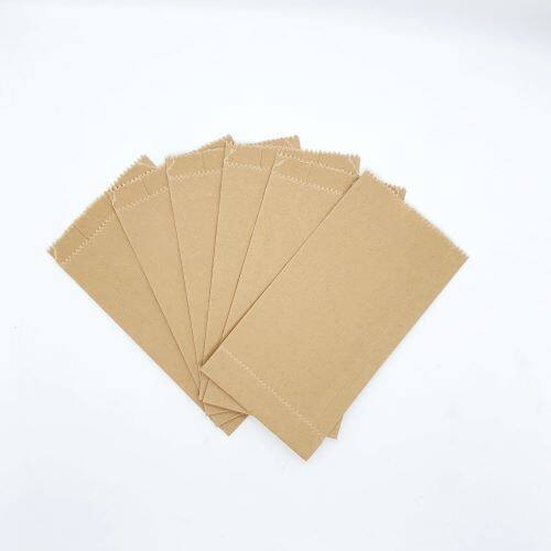 Brown Color Goodies and Gift Paper Bag