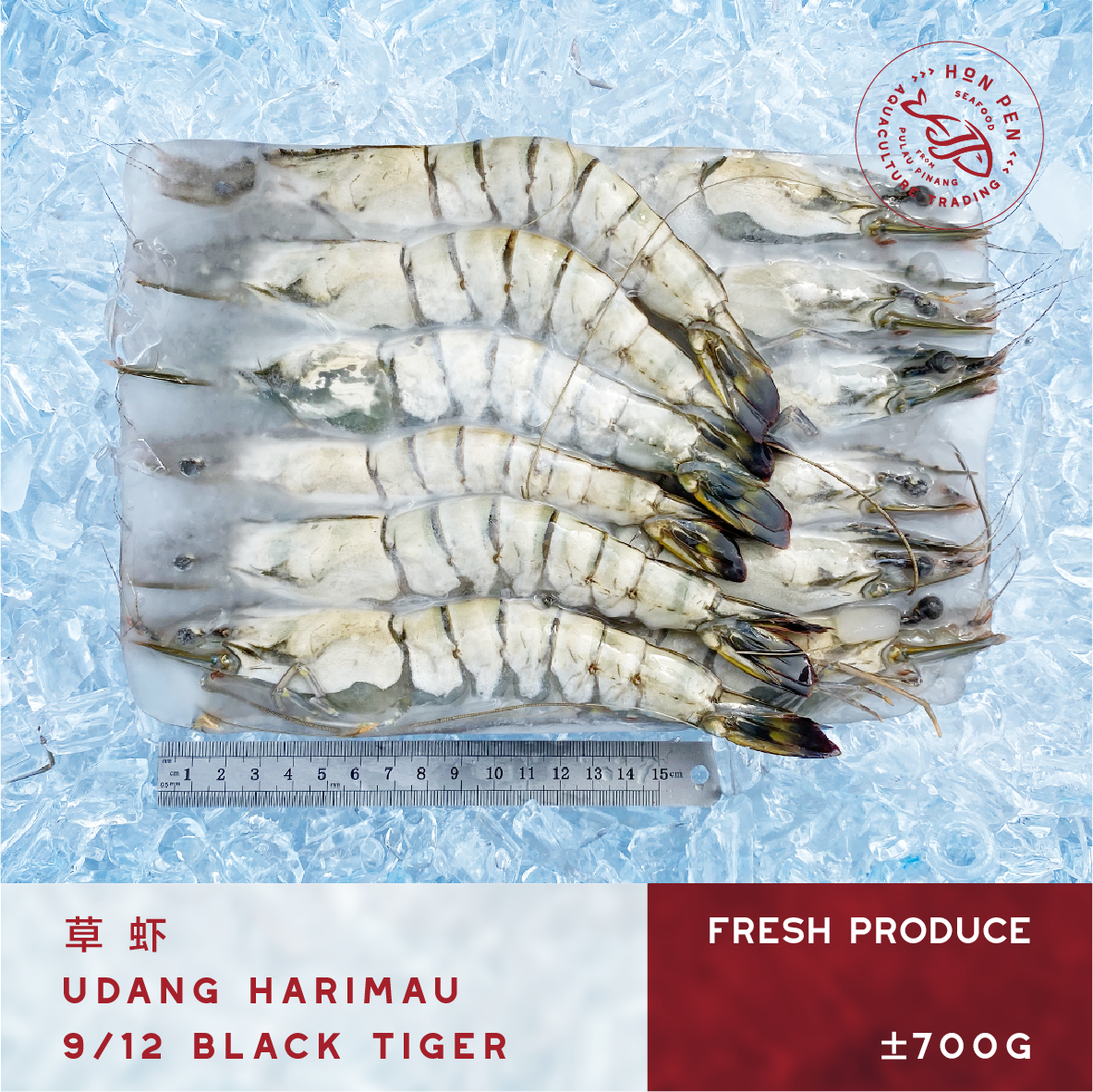 BLACK TIGER 9/12 草虾 UDANG HARIMAU (Seafood) ±700g