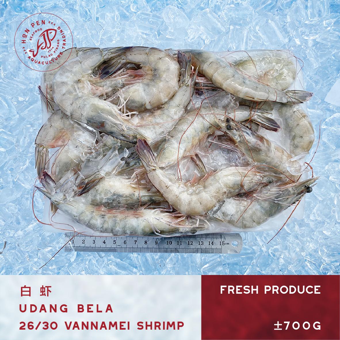 VANNAMEI SHRIMP 26/30 白虾 UDANG BELA (Seafood) ±700g