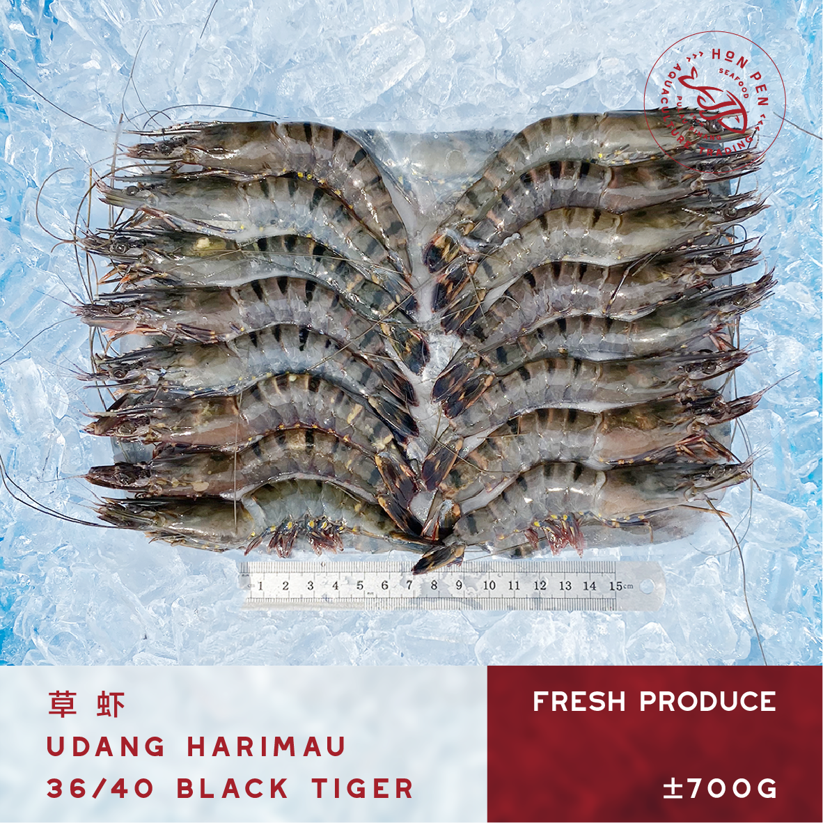BLACK TIGER 36/40 草虾 UDANG HARIMAU (Seafood) ±700g