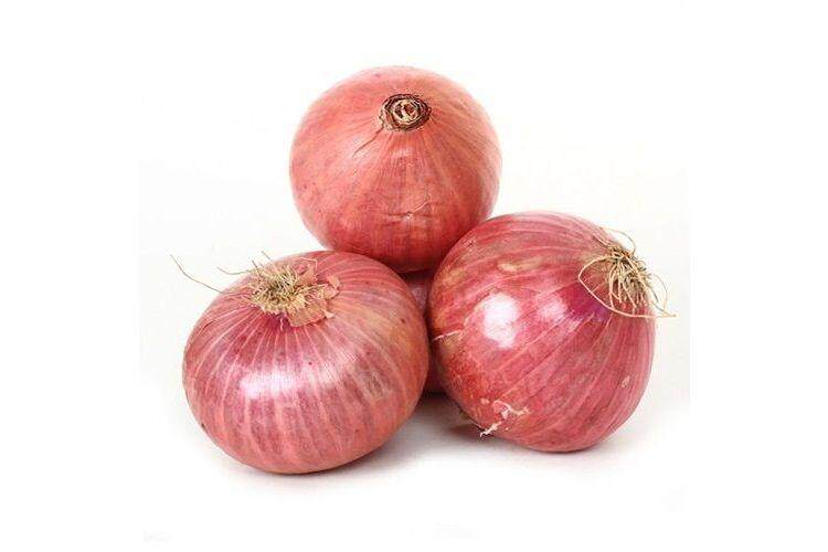 Fresh Red Onions India / Bawang Merah 1 KG
