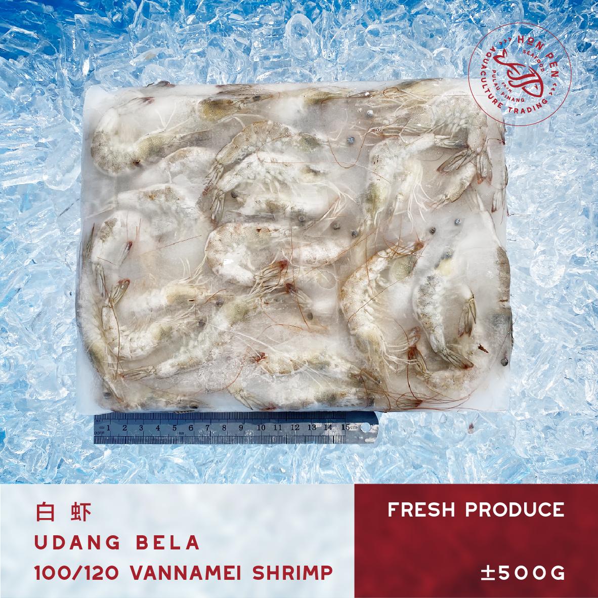 2pcs VANNAMEI SHRIMP 100/120 白虾 UDANG BELA (Seafood) ±500g