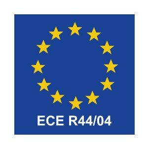 Image result for ECE R44/04