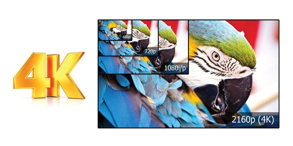 haier 65 4k ultra hd tv. in the cutting-edge technology world of 4k ultra hd tvs, this haier 65\ 65 4k hd tv d
