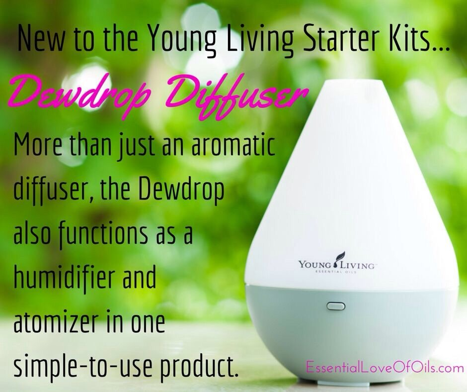 Living Young Dewdrop Diffuser Free 5ml Lavender Lemon Gift 11street Malaysia Massage