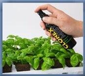 prop clonex mist spray