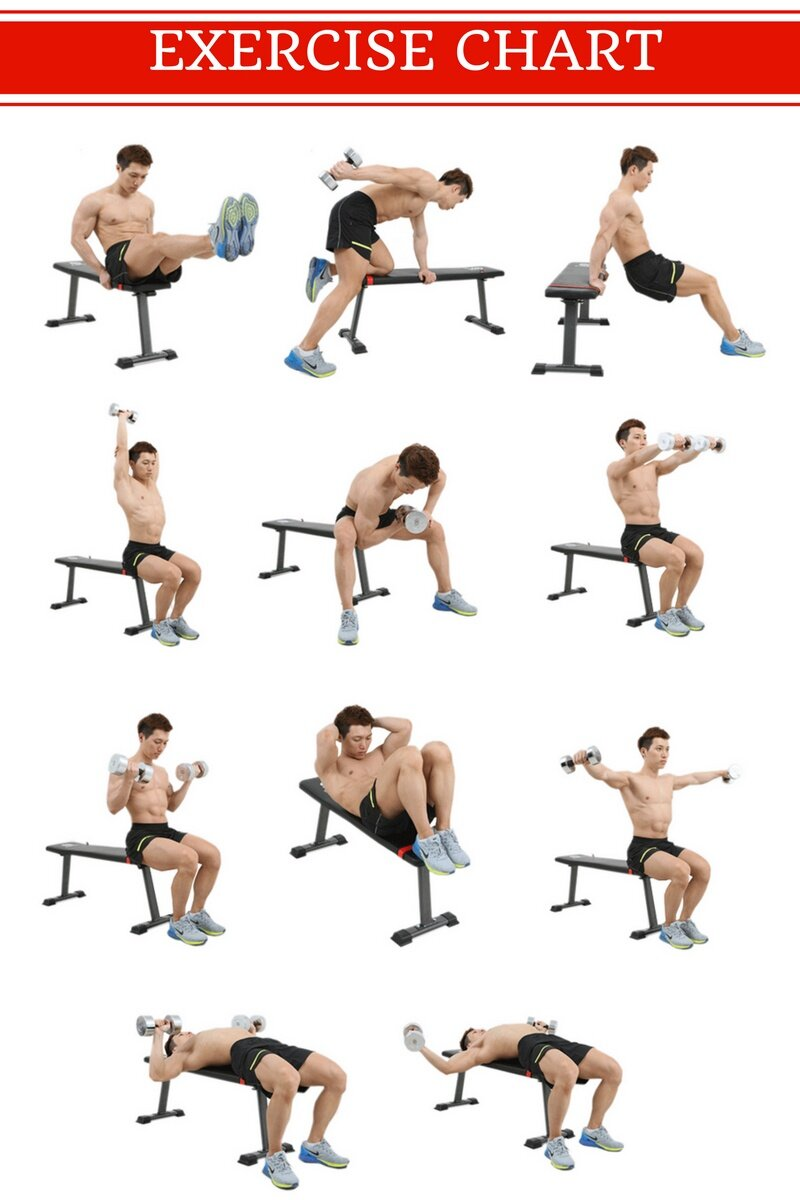 Flat Dumbbell Bench Workout Bench Lazada Malaysia