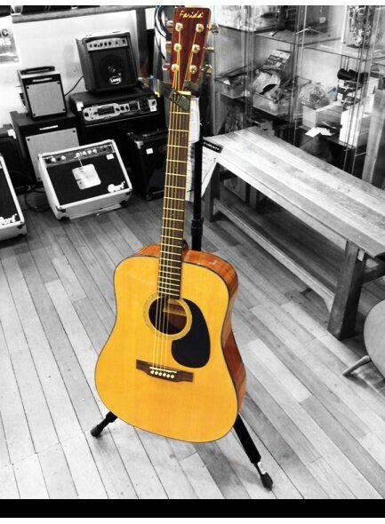 Farida D8 FH Acoustic Guitar